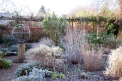Frosty morning in No Man's Garden, January 2016